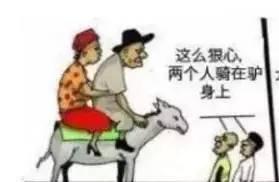 夫妻和驢,傳瘋了 聯誼技巧 第4張