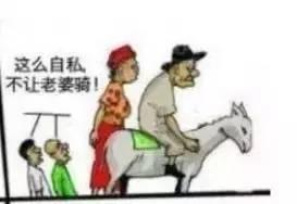 夫妻和驢,傳瘋了 聯誼技巧 第3張
