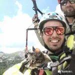 跟着铲屎官,这只猫上天下海各种冒险。这猫生比人的还精彩