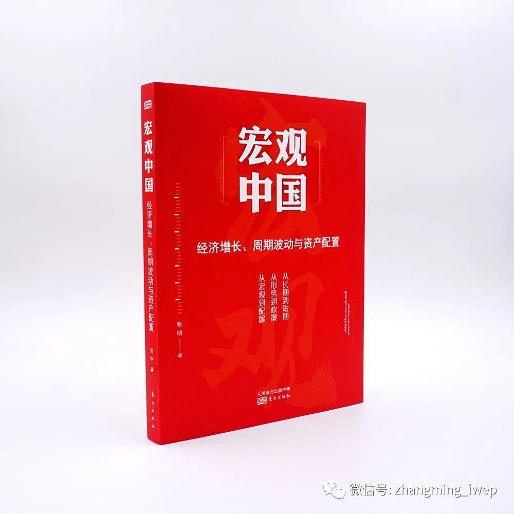 葛天任《宏观中国》书评:致广大而尽精微