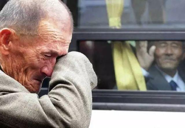 朋友圈裡最動人的照片 你看到第幾張淚奔了?