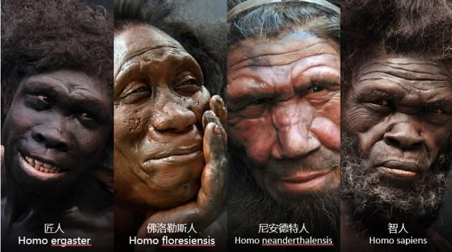 你若知道人类祖先有多残忍,你就明白人类现在有多孤独