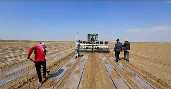 如果你的父母是新疆生產建設兵團的職工,那麼請你認真看完!