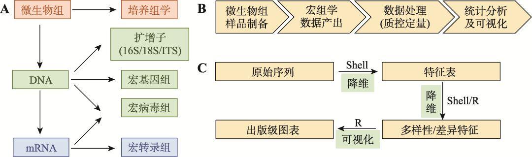 遗传:微生物组数据分析方法与应用- 生信媛  微信公众号文章阅读