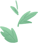10种叶子斑斓的室内观叶盆栽,色彩斑斓的叶子比花朵还好看