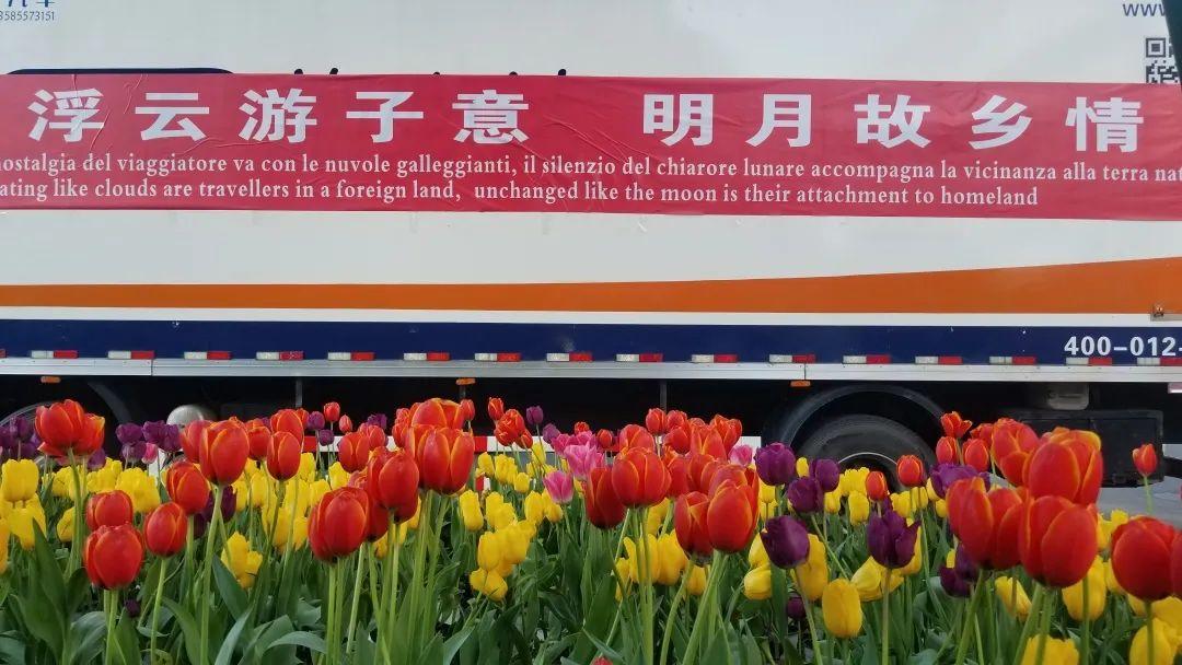 """我们这边的意大利人_意大利已成""""人间炼狱"""",确诊一夜新增5000人…中国:12年前的 ..."""